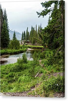 Creekside Canvas Print by Barbara Griswold-Kridner