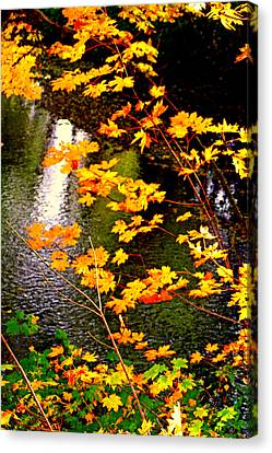 Canvas Print featuring the photograph Creekside Colors by Lynn Bawden