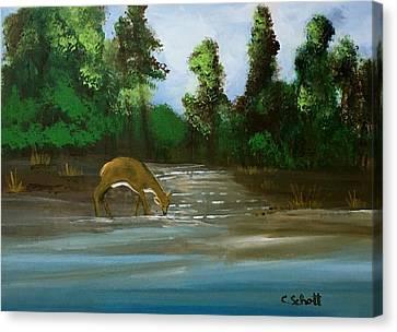 Creekside Drink Canvas Print