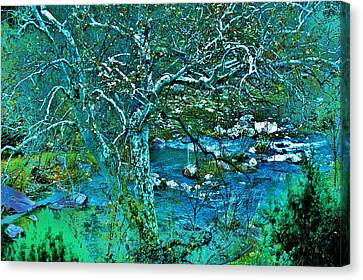 Verde River Canvas Print - Creekside by Helen Carson