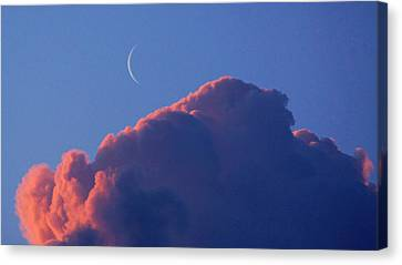 Crescent Moon In The Pink Canvas Print