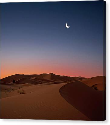 Crescent Moon Over Dunes Canvas Print by Photo by John Quintero