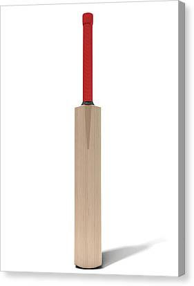 Cricket Bat Canvas Print by Allan Swart