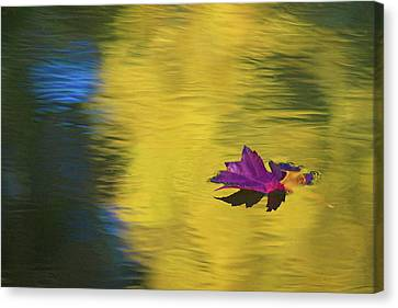 Canvas Print featuring the photograph Crimson And Gold by Steve Stuller