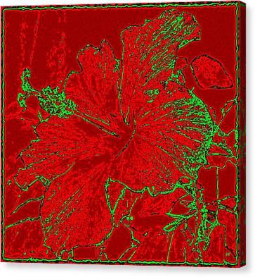 Crimson Hibiscus Canvas Print by Will Borden