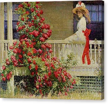 Crimson Rambler Canvas Print by Philip Leslie Hale