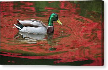 Canvas Print featuring the photograph Crimson Reflections by Elvira Butler