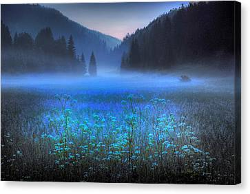 Croatian Valley Canvas Print