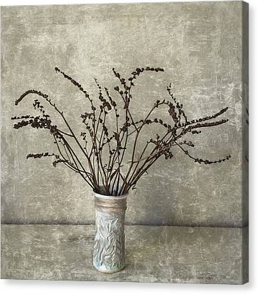 Crocosmia Seed Pods Canvas Print