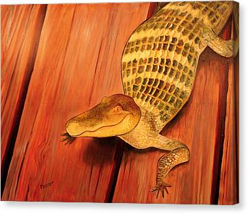 Crooked Smile Canvas Print by Scott Plaster