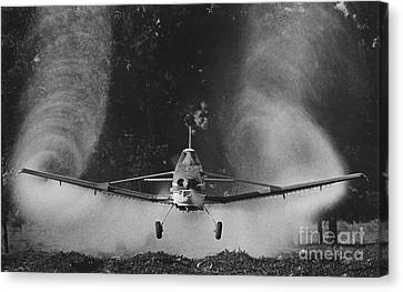 Crop Duster Canvas Print by Jim Wright