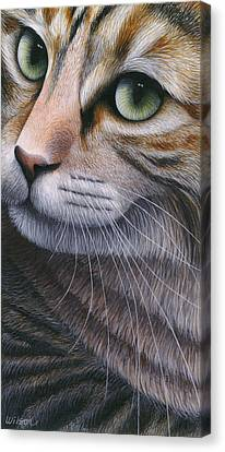 Cropped Cat 2 Canvas Print by Carol Wilson
