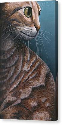 Cropped Cat 3 Canvas Print by Carol Wilson