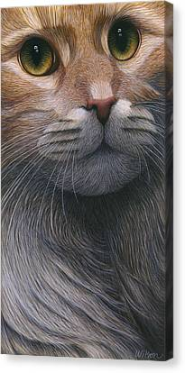 Cropped Cat 4 Canvas Print by Carol Wilson