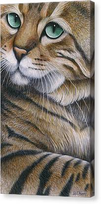 Cropped Cat 6 Canvas Print by Carol Wilson