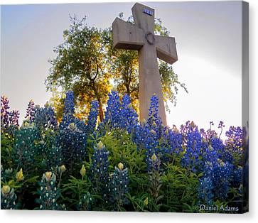 Da225 Cross And Texas Bluebonnets Daniel Adams Canvas Print