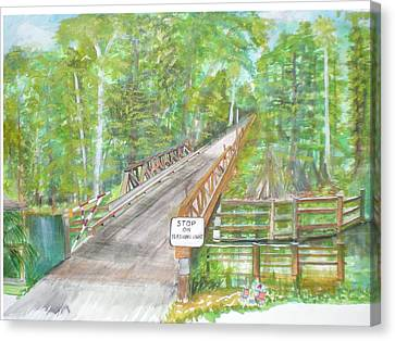 Cross Creek The Forest Canvas Print by Hal Newhouser