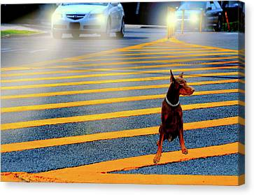 Crossing Guard Canvas Print by Diana Angstadt