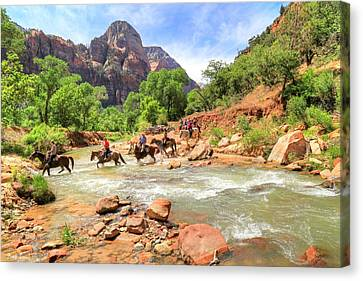 Trail Ride Canvas Print - Crossing The Virgin River In Zion by Donna Kennedy