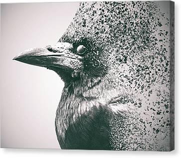 Human Head Canvas Print - Crow Dispersion by Martin Newman