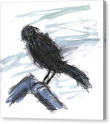 Crow In The Wind Canvas Print by Kevin Callahan