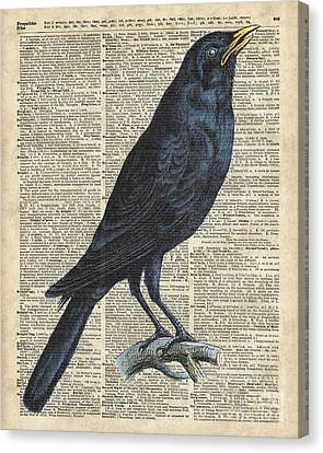 Crow On Dictionary Book Page Canvas Print