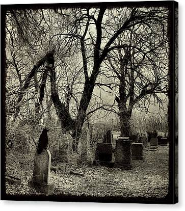 Gnarly Canvas Print - Crow Waits On Tombstone by Gothicrow Images