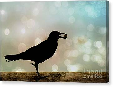 Canvas Print featuring the photograph Crow With Pistachio by Benanne Stiens