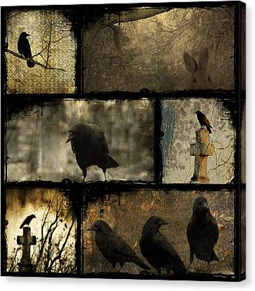 Crows And One Rabbit Canvas Print by Gothicrow Images