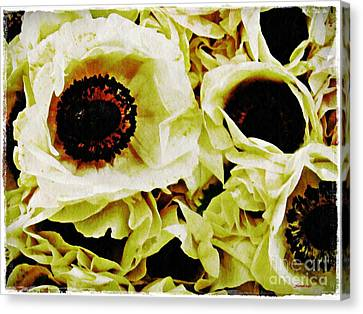 Canvas Print featuring the photograph Crumpled White Poppies by Sarah Loft