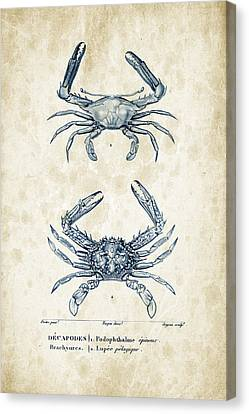 Crustaceans - 1825 - 04 Canvas Print by Aged Pixel