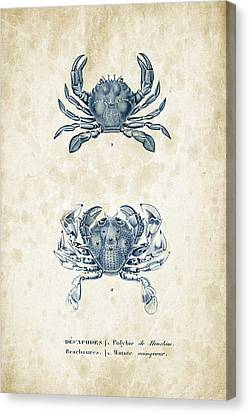 Crustaceans - 1825 - 05 Canvas Print by Aged Pixel
