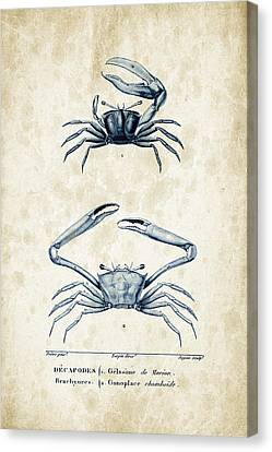 Crustaceans - 1825 - 11 Canvas Print by Aged Pixel