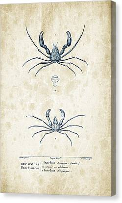 Crustaceans - 1825 - 22 Canvas Print by Aged Pixel