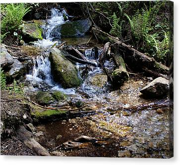 Canvas Print featuring the photograph Crystal Clear Creek by Ben Upham III