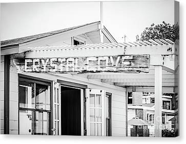 Crystal Cove Sign Black And White Picture Canvas Print