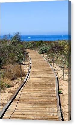 Crystal Cove State Park Wooden Walkway Canvas Print by Paul Velgos