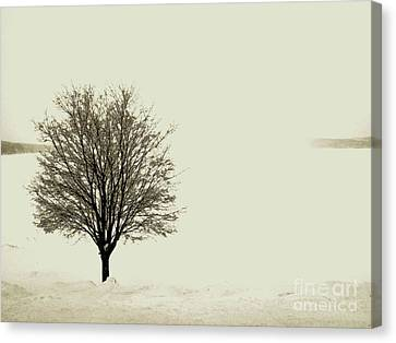 Crystal Lake In Winter Canvas Print by Desiree Paquette