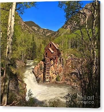 Crystal Colorado Canvas Print - Crystal Mill Through The Trees by Adam Jewell