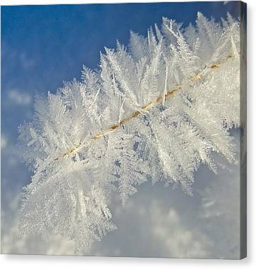 Crystal Perfection Canvas Print
