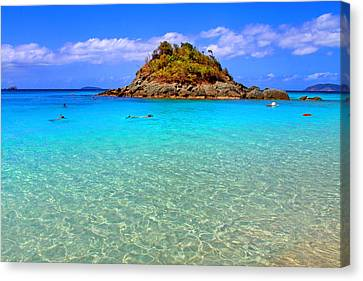 Crystal Waters Canvas Print by Scott Mahon