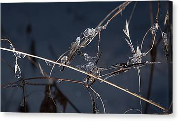 Crystals Canvas Print by Annette Berglund