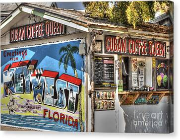 Cuban Coffee Queen Canvas Print by Juli Scalzi
