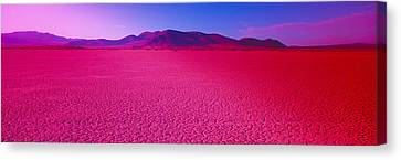 Cuddeback Dry Lake, Mojave Desert Canvas Print