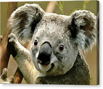 Cuddly Koala Canvas Print by Raven Hannah