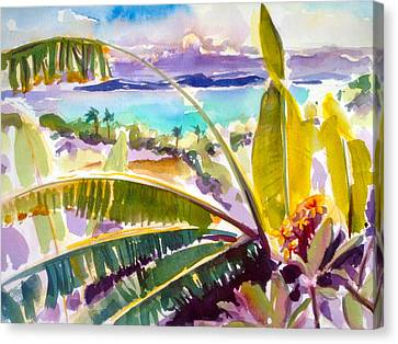 Culebra And Bananas Canvas Print by Barbara Richert