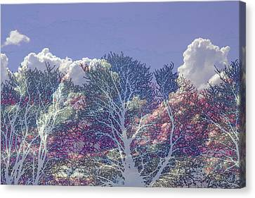 Canvas Print featuring the photograph Cumulus And Trees by Nareeta Martin