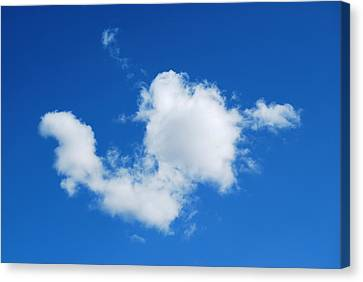 Canvas Print featuring the photograph Cumulus by Marilynne Bull