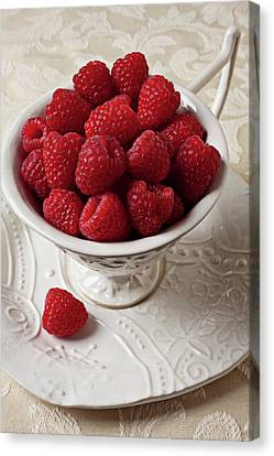 Cup Full Of Raspberries  Canvas Print by Garry Gay