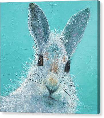 Curious Grey Rabbit Canvas Print by Jan Matson